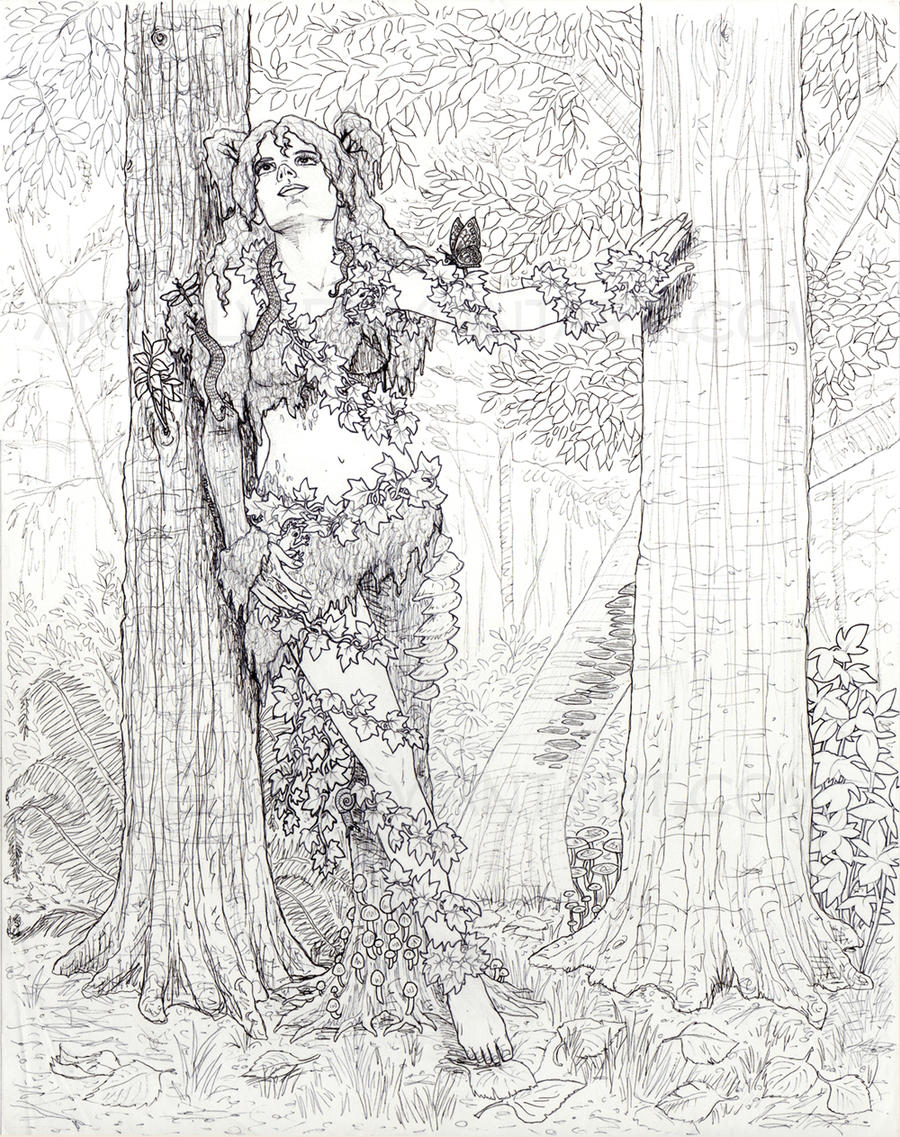Line Art Forest : Dryad in the forest line art by angelvi on deviantart