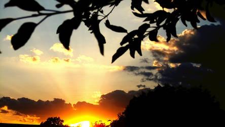 Summer Sunset ( Warm Vibes Wallpaper Entry )