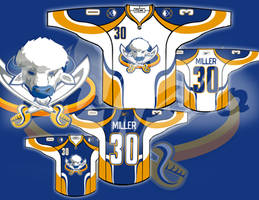 Buffalo Sabres Concept by FrozenVeins923
