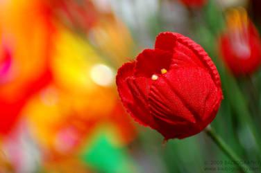 Fake Plastic Flower by jobad