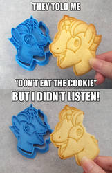 MLP:FiM ~ I Didn't Listen ~ Cookie Cutter by Crimson-Mane