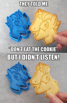 MLP:FiM ~ I Didn't Listen ~ Cookie Cutter