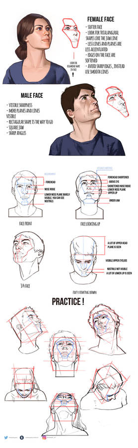 Cheat sheet for drawing heads