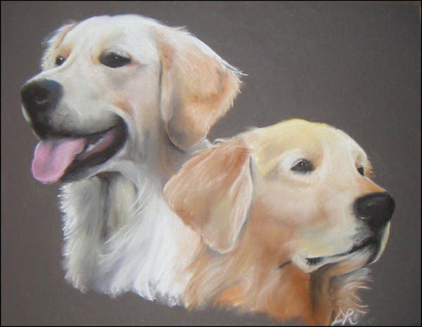 mes deux goldens by melli-mellow
