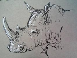 Rhino by JosueMariscal