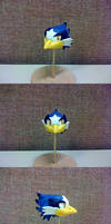 Project Head - Stellar