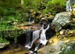 Amicalola Falls 3