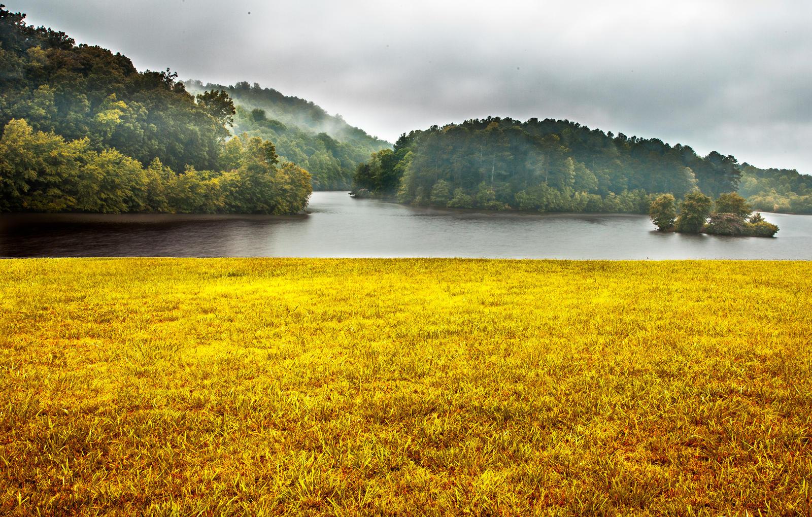 Fields of Gold by rctfan2 on DeviantArt