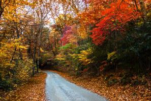Fall by rctfan2