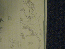 Crane Crest Dragon by CalydaRose