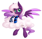 Cloud, socks and pony. AT Lil-Penguins