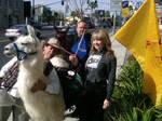 Share the Llama LOVE