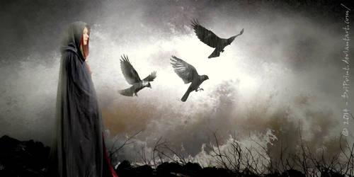 Rhiannon - Maker of Birds