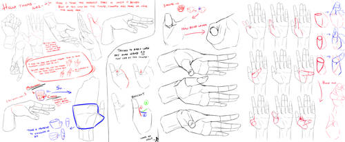Hand Study 2- Thumb by Huuni