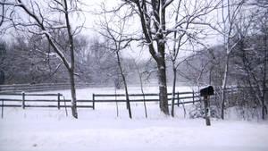 Barn with Mailbox