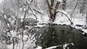 Christmas Creek (Photo 2)