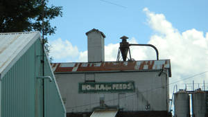 Local Feed Store