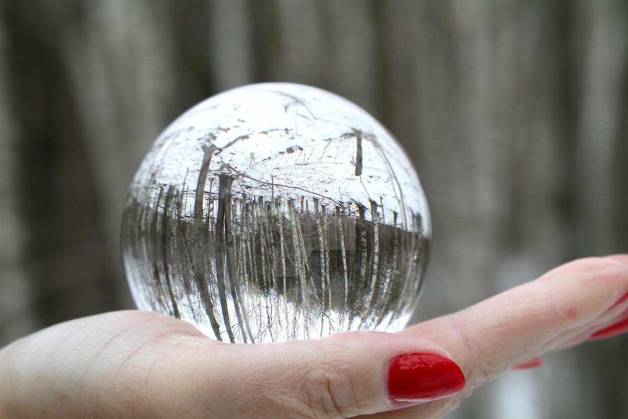 Birch Treeball 2