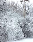 Winter Blast 1