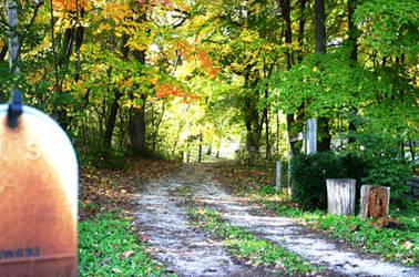 Falltime Driveway