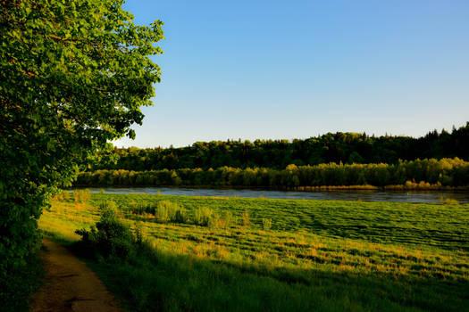 Peaceful nature corner