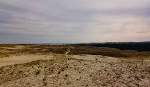 The sand dunes of Nida II