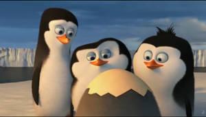 Kowalski, Skipper, Rico as Babies by CrazzyCupcake