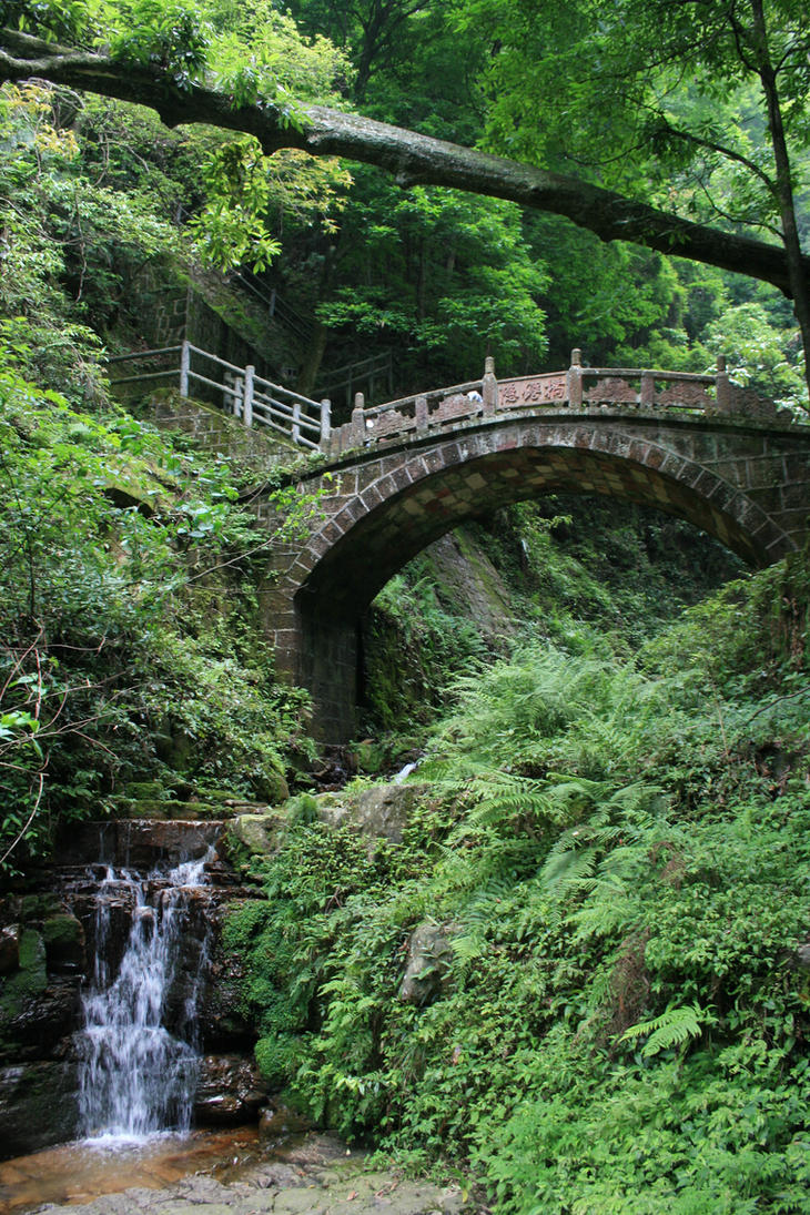 Bridge by Mortitia212