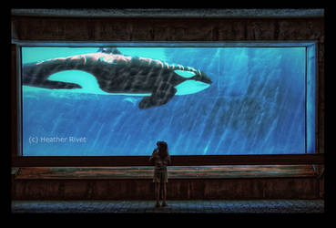 The Encounter by HeatherWaller-Rivet