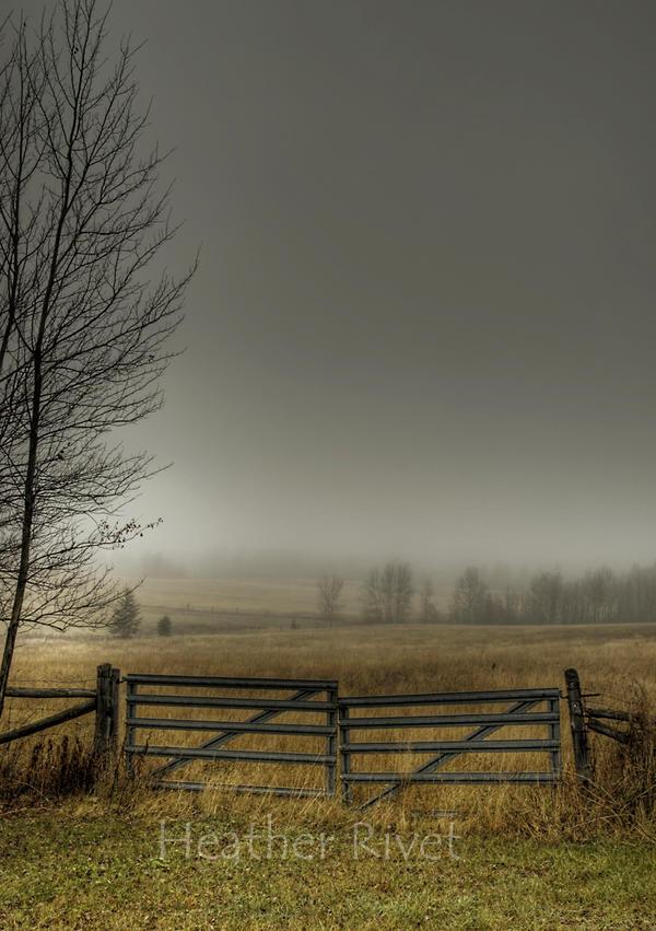 Autumns Pasture by HeatherWaller-Rivet