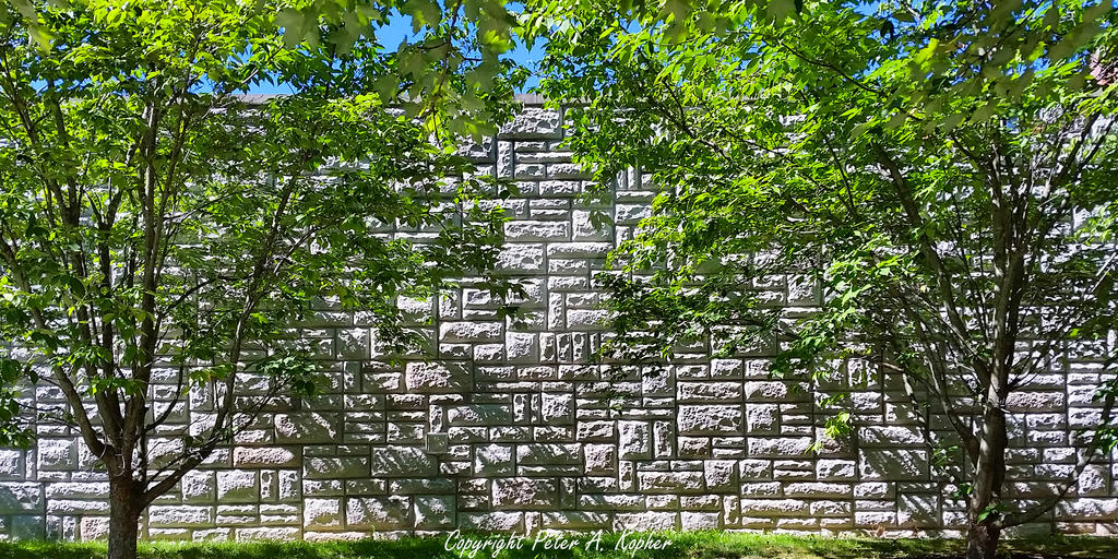 Maple Avenue Wall by peterkopher