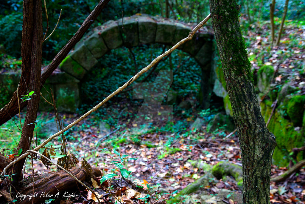 Garden Arch copyright by peterkopher