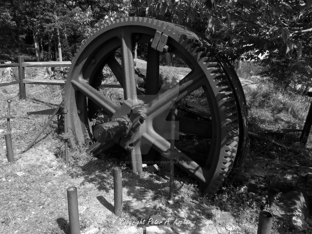 Bull Wheel by peterkopher