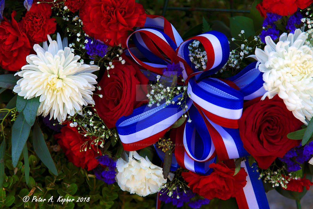 Ribbon and Roses  by peterkopher