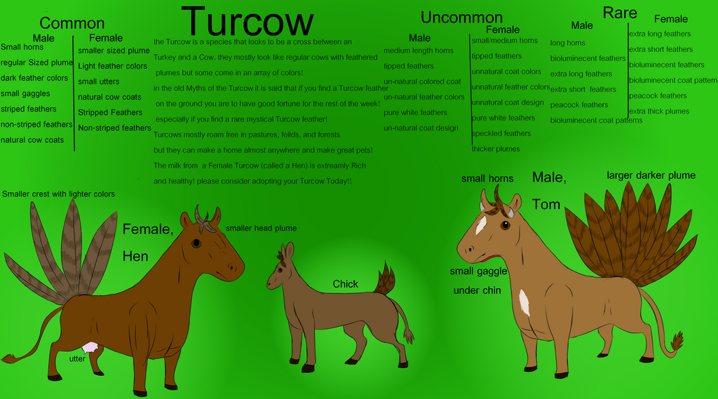 Turcow refrence sheet by brigetmiget