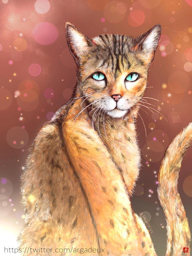 Miau by Argadeux