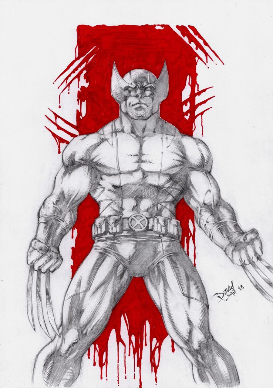 Wolverine by DLimaArt