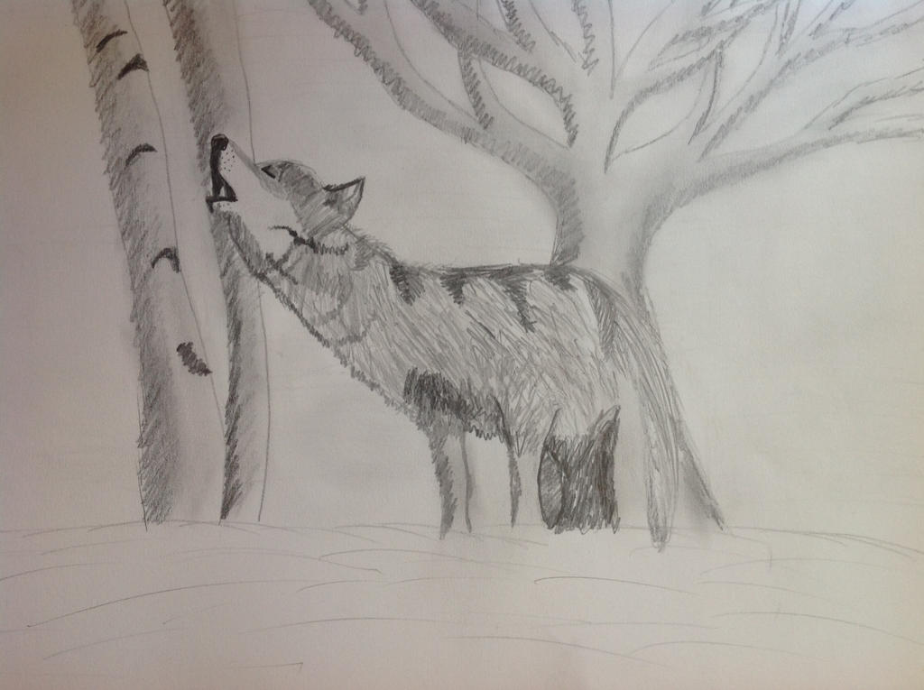 Wolf at night by Jessie123452bee