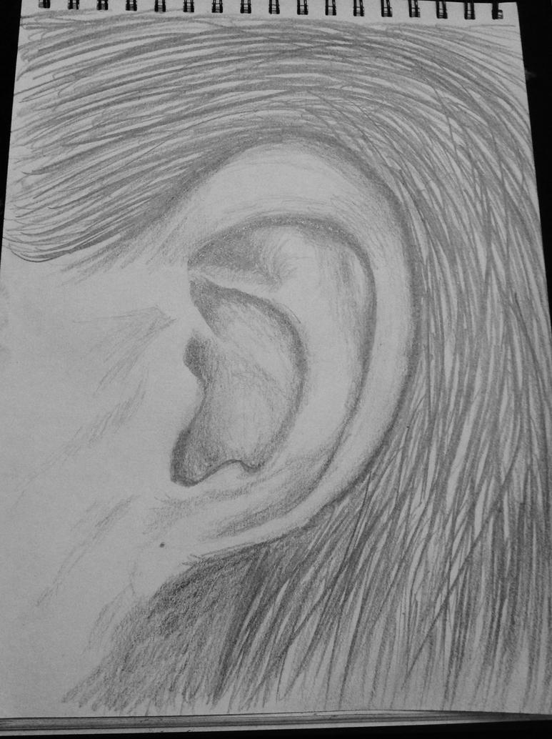 An Ear by Jessie123452bee