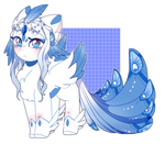 MLP Adoptable   CLOSED  