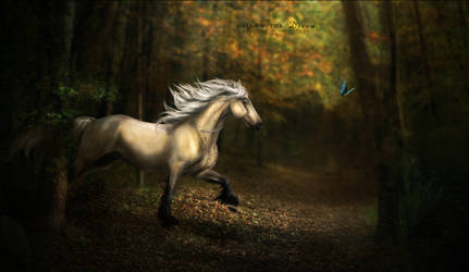 Follow the Dream by Yewrezz