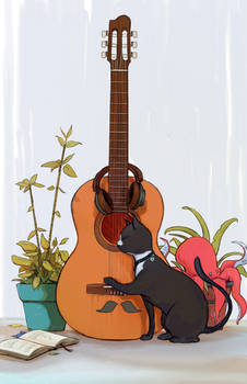 A Cat Playing Guitar