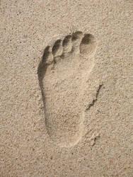 raised footstep by amantekesh
