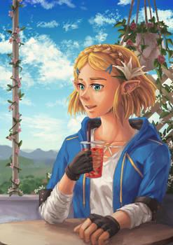 Modern Zelda