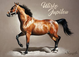 ULISKO JUPILOU by Skyzune ART by SKYZUNE-ART