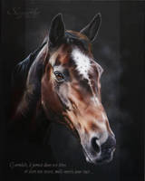 GWENDALE D'AINAY by SKYZUNE ART by SKYZUNE-ART
