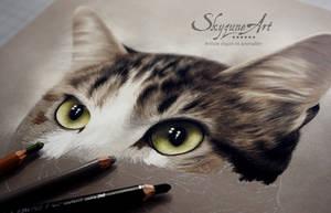 CANAILLE by SKYZUNE ART by SKYZUNE-ART