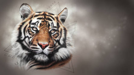 WALLPAPER TIGER KATECHEO 4K 3840x2160