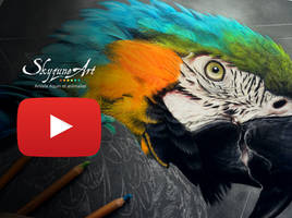 NEW VIDEO with exotic bird in pastel