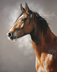 Horse portrait: VELOCIO by SKYZUNE ART